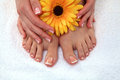 Closeup photo of a beautiful female feet with Royalty Free Stock Photo