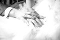 Closeup photo of newly married couple holding hands black and white Royalty Free Stock Photos
