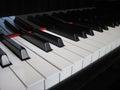 Closeup of piano keys, close frontal view Royalty Free Stock Photo