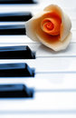 Closeup piano keys orange flower Royalty Free Stock Photo