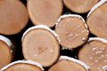 Closeup of pine logs Royalty Free Stock Photography