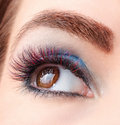 Closeup portrait of eyelash extensions colored Stock Photography