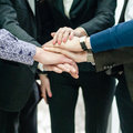 Closeup portrait group business people hands together team handshake Stock Photos