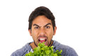 Closeup portrait of handsome young man holding fresh lettuce leaves with mouth open isolated on white Royalty Free Stock Images