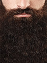Closeup portrait of long beard and mustache man Royalty Free Stock Photo