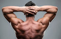 Closeup portrait of a muscular mans back Royalty Free Stock Photo
