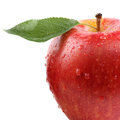 Closeup red apple fruit with leaf isolated on a white background Royalty Free Stock Photo
