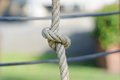 Closeup Rope with knot Stock Photography