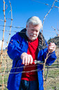 Portrait of senior male pruning grape vine branch in a vineyard Royalty Free Stock Photo