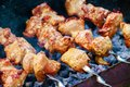 Closeup shot of barbecue on a sunny day in a picnic Royalty Free Stock Photo