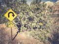 Closeup shot of a road sign in Zion National Park, Utah, USA Royalty Free Stock Photo