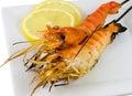 Closeup of Shrimp Skewers Stock Image