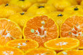 Closeup of sliced oranges Royalty Free Stock Photo