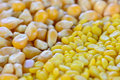 Closeup of  split yellow mung beans and sweetcorn seeds Royalty Free Stock Photo