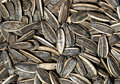 The Closeup of Sunflower seed Royalty Free Stock Photography
