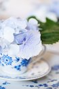 Closeup of a teacup with flowers Royalty Free Stock Photo