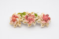 Closeup to Old Flowers Hair Clip Made of Shell, Isolated Royalty Free Stock Photo