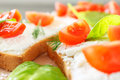 Closeup tomato and cheese bruschetta Royalty Free Stock Photo