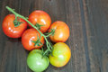 Closeup of tomatoes on the vine on wood Royalty Free Stock Photo