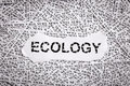 Closeup torn pieces and tapes of paper with the word ECOLOGY. Royalty Free Stock Photo