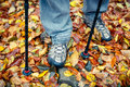 Closeup of tracking shoes and poles on autumn leaves Stock Image