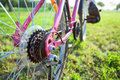 Closeup view of bicycle sprocket on the rear wheel and feet pedals Stock Photos