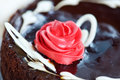 Closeup view chocolate cake creamy pink rose Royalty Free Stock Photo