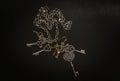 Closeup view of old decorative various vintage keys on dark grey Royalty Free Stock Photo
