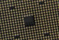 CPU Pin Grid Array - Medium Tilted - Bottom of Computer Microprocessor Royalty Free Stock Photo