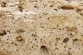 Closeup of weathered limestone rock perforated outcrop in the bahrain oil field hillocks Royalty Free Stock Photos