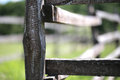 Closeup of wooden fence on a corral farmland rural scene Royalty Free Stock Photo