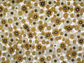 Cloth pattern. Royalty Free Stock Photography