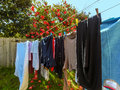 Clothes are drying 2 Royalty Free Stock Photo