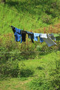 Clothes hanging to dry on a laundry line against green hill Royalty Free Stock Photography