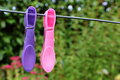 Clothes pin on a washing line Royalty Free Stock Photo