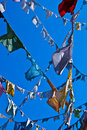 Clotheslines Royalty Free Stock Image