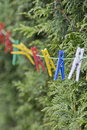Clothespin colorful on a clothesline Royalty Free Stock Image