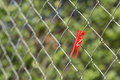 Clothespin hanging on a metal fence Royalty Free Stock Image