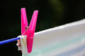 Clothespin holding laundry on the drying line Royalty Free Stock Photo