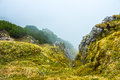 Cloud covering green cliff at high altitude Royalty Free Stock Photo