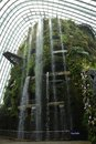Cloud forest dome in singapore Royalty Free Stock Photography