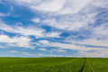 Cloud formations over a green field picturesque of wheat tractor marks on the right Stock Photo