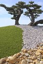 Cloud shape clipping of olive trees in southern france Royalty Free Stock Photo