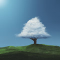 Cloud on a tree Royalty Free Stock Photo