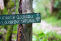 Cloudbridge waterfall sign with the forest of costa rica in the on a metal post close by parquenational la amistad Stock Photography