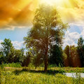 Clouds anf trees rural landscape and sun rays Royalty Free Stock Image