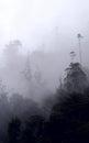 Clouds envelop the andes hills near banos de agua santa ecuador Stock Photography