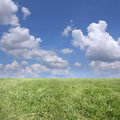 Clouds and grass background of cloudy sky green Stock Image