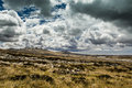Clouds over falkland islands after rain grass terrains of Royalty Free Stock Images