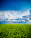 Clouds over the green field Royalty Free Stock Photo